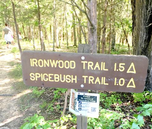 Kincaid offers two hiking trail options